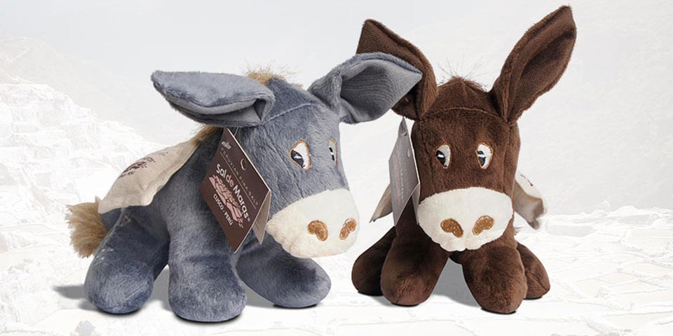 Discover the Ramón The Donkey story